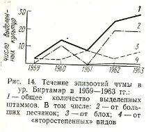 рис. 14. Течение эпизоотий чумы в урочище Биртамар в 1959-1963гг. 1 — общее количество выделенных отдельных случаях штаммов штаммов. В том числе: 2 — от больших песчанок; 3 — от блох; 4 — от «второстепенных» видов;