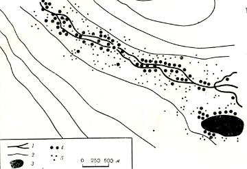 Рис. 5. Распределение мест обитания в долинном (ленточном) поселении больших песчанок (северо-западное Приаралье): 1 — тальвег (сухие русла); 2 — горизонтали (через 4 м); 3 — такыр; 4— норы, обитаемые зимой и летом; 5 — норы, обитаемые только в теплое время года