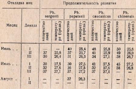 Таблица 3. Сравнительная продолжительность субитанного развития москитов с учетом температурных условий содержания разводок за 1954—1955 гг.