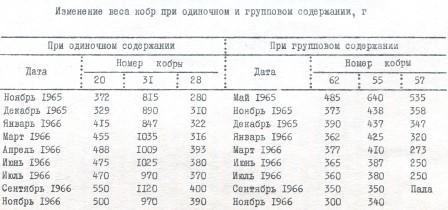 Таблица 1. Изменение веса кобр при одиночном и групповом содержании