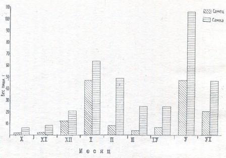 Рис. 2. Интенсивность питания гюрзы в зависимости от пола