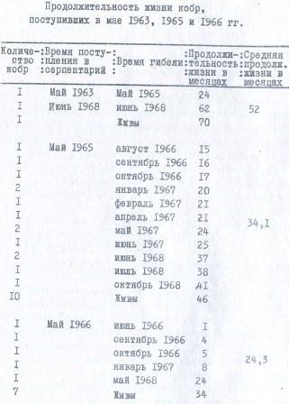Таблица 4. Продолжительность жизни кобр, поступивших в мае 1963, 1965 и 1966 гг