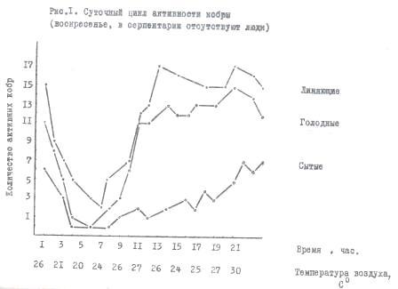 Рис 1. Суточый цикл активности кобры (в помещении отсутствуют люди)